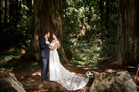 Alex & Colton's Redwood forest wedding